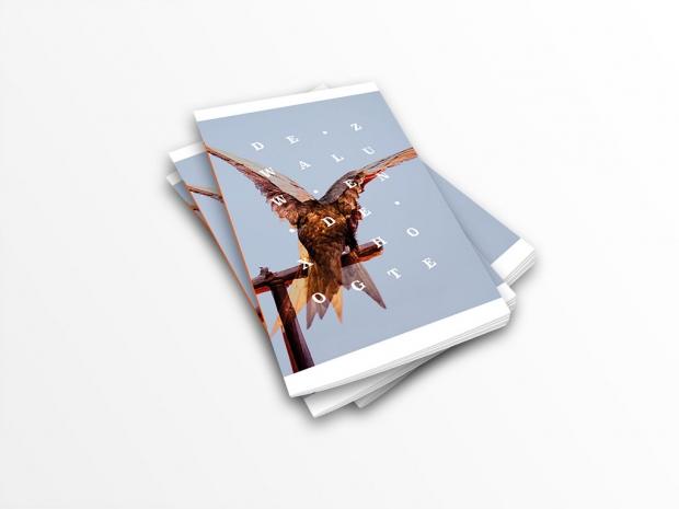 De zwaluw en de x-hoogte